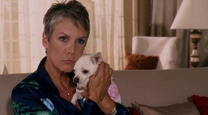 """Grandview, U.S.A."" & ""Beverly Hills Chihuahua"" Captures Added to Gallery"